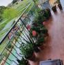 foto 14 - San Giuliano Terme stanze zona Porta a Lucca a Pisa in Affitto