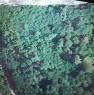 foto 0 - Pescia terreno boschivo a Pistoia in Vendita