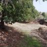 foto 3 - Modica frazione Frigintini proprietà con casale a Ragusa in Vendita