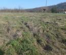 Annuncio vendita Volpedo in località Cascinetta terreno agricolo